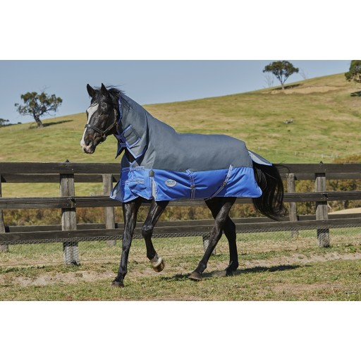 25% OFF WeatherBeeta Comfitec Premier Thinsulate Combo Neck Heavy Weight Turnout Rug
