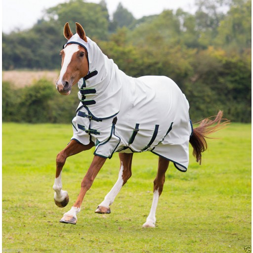 Shires Sweet-Itch Combo Fly Rug Was £70!