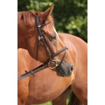 Stubben Snaffle Bridle 2300 Leitrim with Combined Noseband Was £155