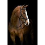 Horseware Rambo Micklem Competition Diamante Bridle Black