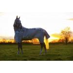 Horseware Amigo 3 in 1 Vamoose Disc Closure