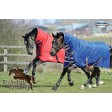 Weatherbeeta Genero Heavy Weight Combo Neck Turnout Rug